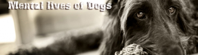 The Fascinating Dogs- Mental lives of Dogs